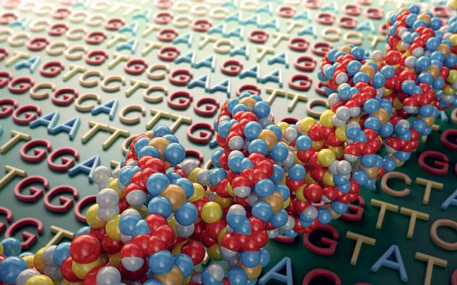 A informação codificada na molécula DNA supera de longe qualquer das nossas tecnologias disponíveis.